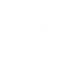 volunteer-icon-10-01